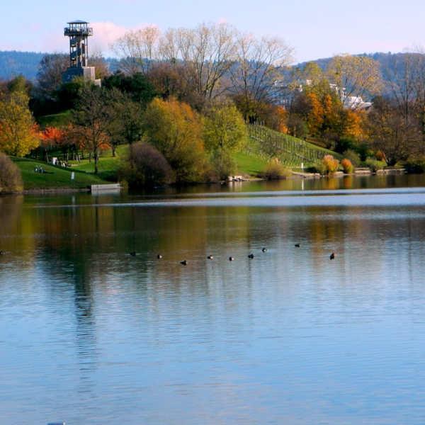 Der Seepark in Freiburg